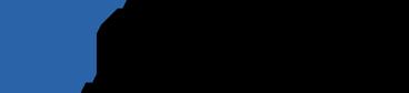Gruppo Sinapsi